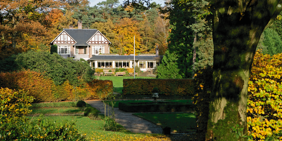 Dutch Autumn: spectacular coloured forest and fine dining in restaurant with Michelinstar